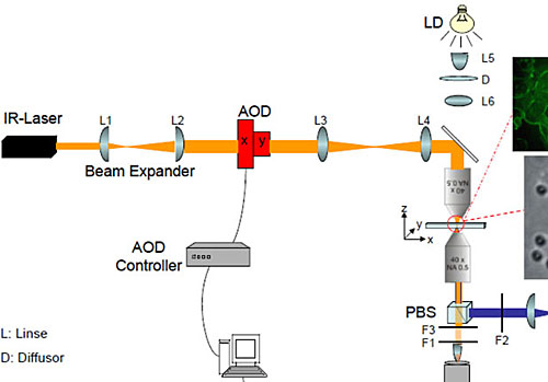 Elecsymbols together with SXD besides Detailedresult together with 232187 Help Dn2540 Ccs Design further La mont boiler. on tube schematic drawing